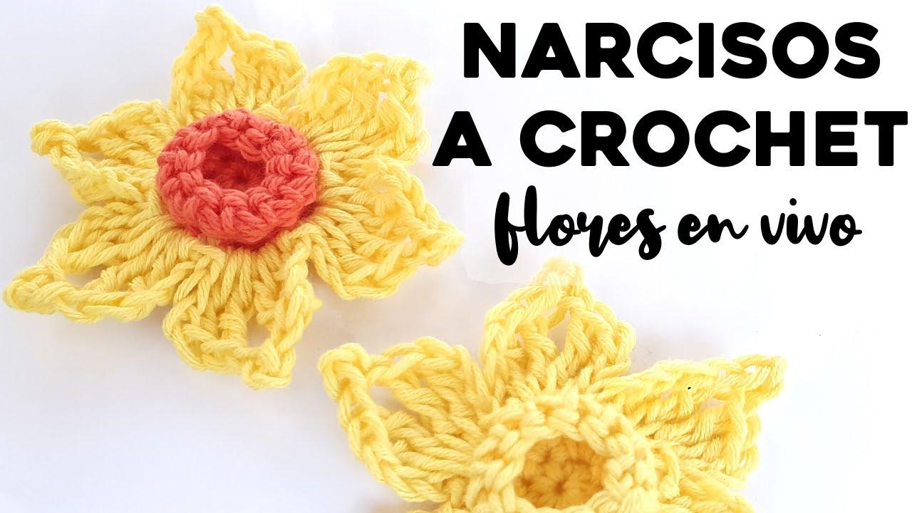 CÓMO TEJER NARCISOS A CROCHET: tutorial paso a paso flores a crochet   Ahuyama Crochet