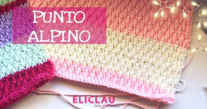 Esquema de Puntos y Patrones #10 | PUNTO ALPINO | Scheme of points | EliClau