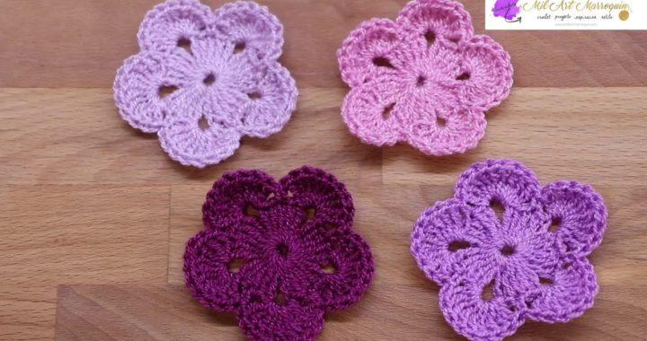 Flor # 21 Crochet 5 Pétalos 2 Vueltas