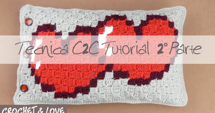 Tutorial Tecnica C2C uncinetto 2° Parte (sub. Eng. y Esp.)
