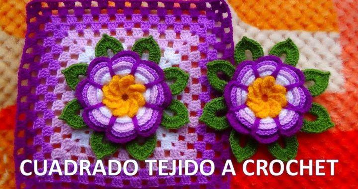 VIDEO COMPLETO de Cuadrado o granny square con flor rosita lila tejida a crochet y hojitas