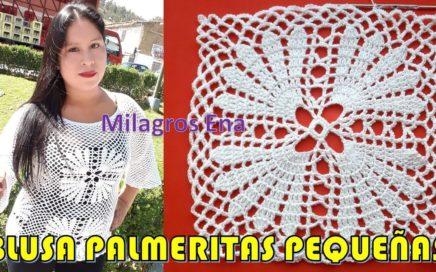 Blusa a crochet con cuadrados Palmeritas Pequeñas y mangas en punto Malla paso a paso