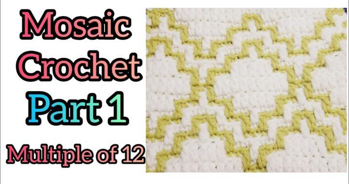 Mosaic Crochet - Multiple of 12 - Part 1 - Beginner Friendly Crochet Tutorial Pattern #9