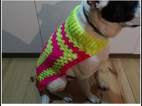 Ropa para mascotas en crochet paso a paso grandes y chicas