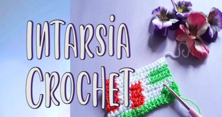 TÉCNICA INTARSIA CROCHET – Cómo tejer labor con dibujos reversible | Crochetcosas
