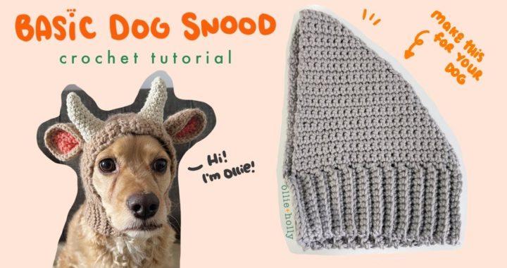 How to Crochet a Dog Snood!   Basic Dog Snood Crochet Tutorial