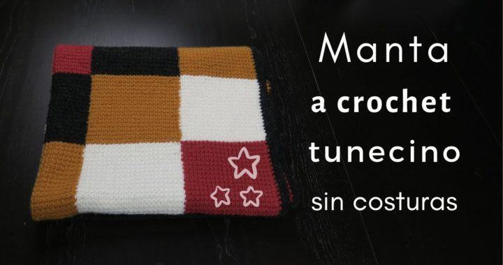 MANTA A CUADROS SIN COSTURAS | PUNTO TUNECINO | CHIC DIY