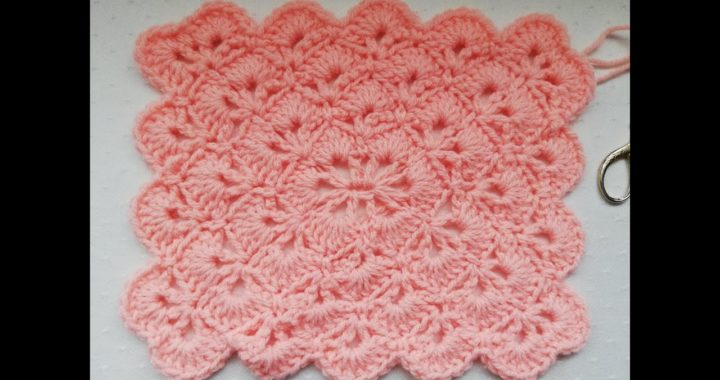 Beautiful Shells stitch crochet rectangle Crochet Nuts