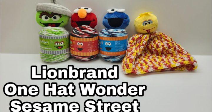 Yarn Review | Lion Brand Yarn One Hat Wonder | Bag O Day Crochet