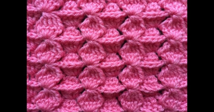 Crochet Stitch for Blanket, Scarf or Hat