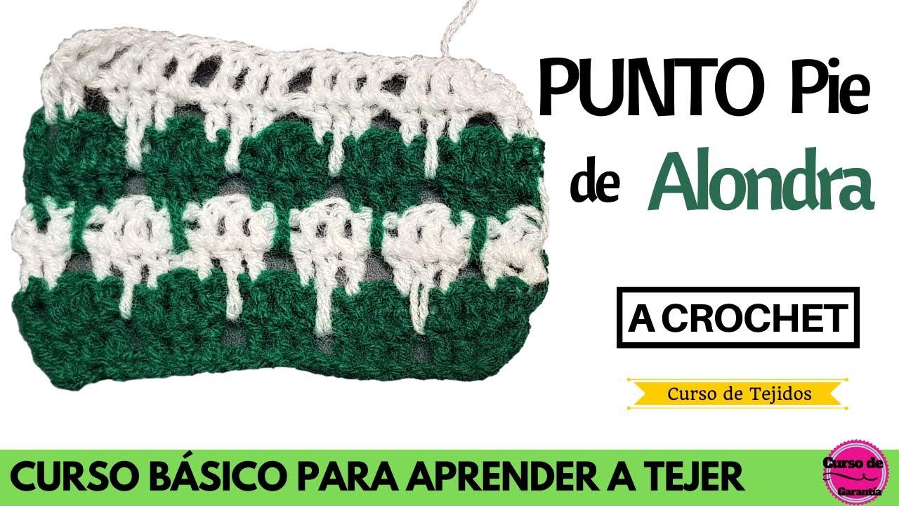📚 Curso Gratis Online a Crochet ✅ Punto Pie de Alondra Crochet 💡 Aprende a Tejer a Ganchillo