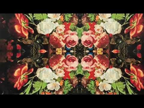 Wallflowers Crochet Blanket